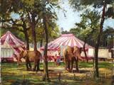 Le cirque au Jardin d'Acclimatation [Paris]