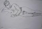 Nu masculin allongé #2 [Nicolas]