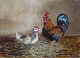 Coq et poule
