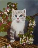 Le chat sur le pommier