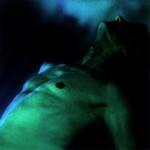 Eclats de vert, ombres bleues #4