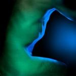 Eclats de vert, ombres bleues #12