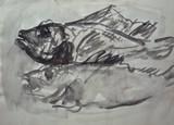 Les deux poissons #2