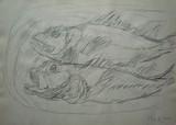 Le plat de poissons #2