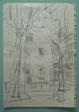 Les arbres devant la maison