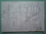 Les grands arbres #2