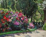 Parsi, bougainvilliers au Jardin du Luxembourg